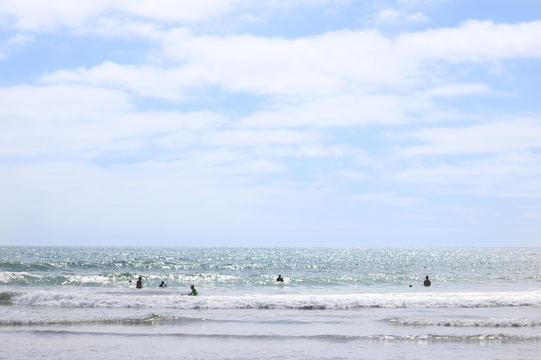 MQ_beachday2